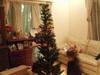 Christmas_024_2